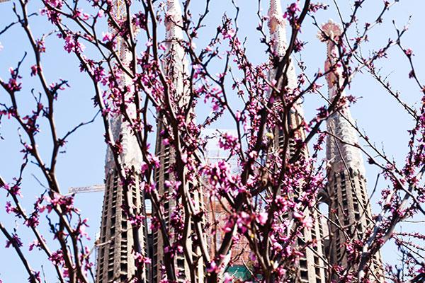 Eventos sostenibles en Barcelona